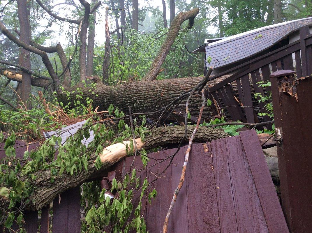 Backyard wreckage