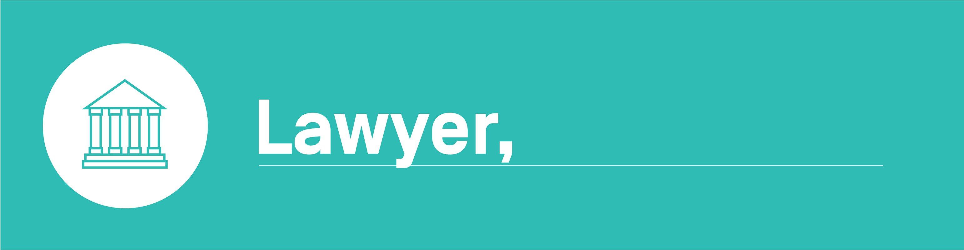Algorithmic bias - lawyer