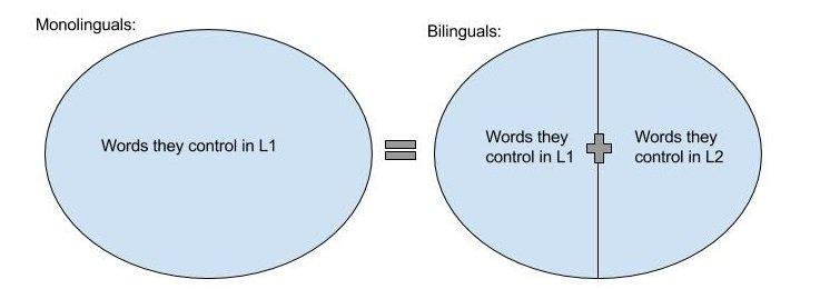 Monolinguals vs Bilinguals