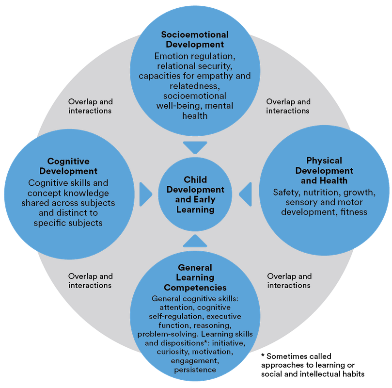 An Organizational Approach for the Domains of Child Development and Early Learning